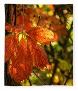 Autumn Begins 2 Fleece Blanket