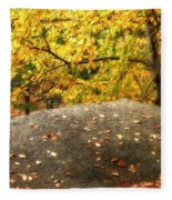 Autumn Boulder And Leaves Fleece Blanket