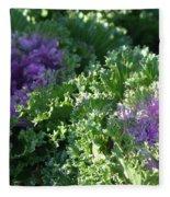 Autumn Cabbage Fleece Blanket