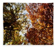 Autumn Chestnut Canopy   Fleece Blanket