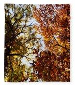 Autumn Chestnut Canopy   Fleece Blanket