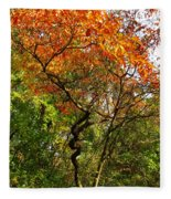 Autumn Color At Old Woman Creek 2 Fleece Blanket