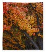 Autumn Color Fleece Blanket