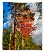 Autumn Color In The Trees Fleece Blanket