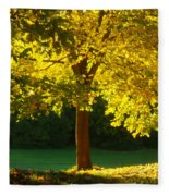 Autumn Colors 10 Fleece Blanket