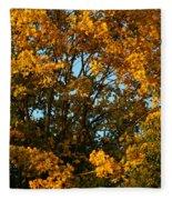 Autumn Colors 11 Fleece Blanket