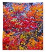 Autumn Colors - 113 Fleece Blanket
