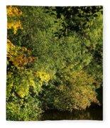 Autumn Colors 3 Fleece Blanket