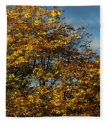 Autumn Colors 5 Fleece Blanket