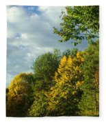 Autumn Colors 6 Fleece Blanket