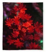 Autumn Colors Early Fleece Blanket