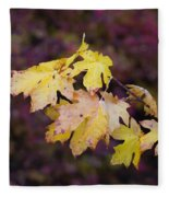 Autumn Contrast Fleece Blanket