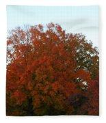 Autumn Eve Fleece Blanket