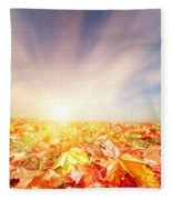Autumn Fall Landscape Fleece Blanket