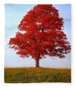 Autumn Flame Fleece Blanket