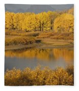 Autumn Foliage Surrounds A Pool In The Fleece Blanket