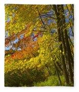 Autumn Forest Scene In West Michigan Fleece Blanket