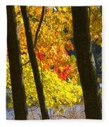 Autumn Forest Scene Fleece Blanket