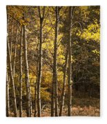 Autumn Forest Scene With Birches In West Michigan Fleece Blanket