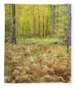 Autumn Forest - White Mountains New Hampshire Fleece Blanket