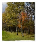 Autumn Forests And Fields Fleece Blanket