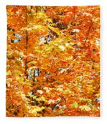 Autumn Fury Fleece Blanket