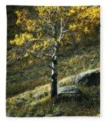 Autumn Glow - Yellowstone Fleece Blanket