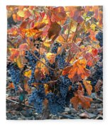 Autumn Grapes Fleece Blanket