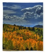 Autumn In Colorado Fleece Blanket
