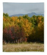 Autumn In Idaho Fleece Blanket