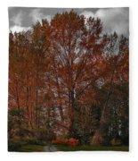 Autumn In Mt Vernon Fleece Blanket