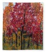 Autumn In Nashville Fleece Blanket