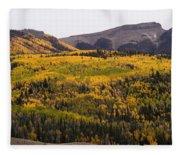 Autumn In The Colorado Mountains Fleece Blanket