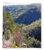 Autumn In The Gorge Fleece Blanket