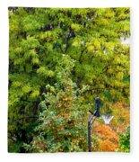 Autumn In The Suburbs Fleece Blanket