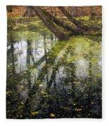 Autumn In Wildwood Park Fleece Blanket