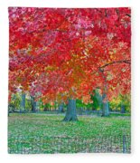 Autumn In Central Park Fleece Blanket