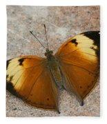 Autumn Leaf Butterfly Fleece Blanket