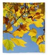 Autumn Leaves Of The Tulip Tree Fleece Blanket