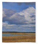 Autumn Marsh At Shell Island Fleece Blanket