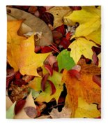 Autumn Moods 19 Fleece Blanket