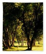 Autumn Morning Stroll Fleece Blanket