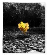 Autumn Oak Isolations Fleece Blanket