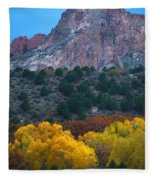 Autumn Of The Gods Fleece Blanket