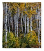 Autumn On Mcclure Pass Fleece Blanket