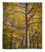 Autumn Orange Forest Colors At Hager Park No.1189 Fleece Blanket
