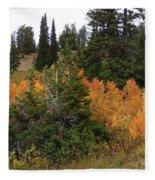 Autumn Panorama Fleece Blanket