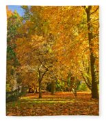 Autumn Park Fleece Blanket