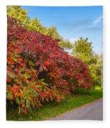 Autumn Path Fleece Blanket