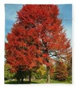 Autumn Red Fleece Blanket